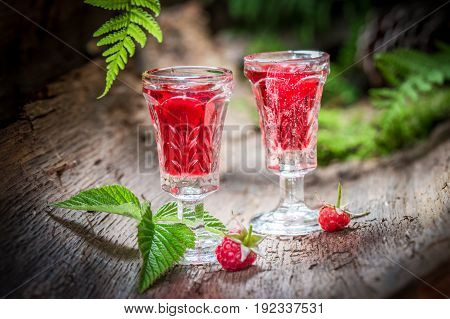 Delicious Raspberries Liqueur Made Of Fruits And Alcohol In Forest