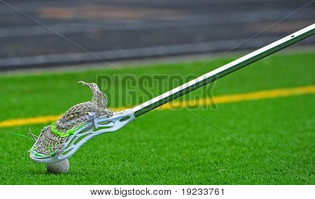Lacrosse stick coming down on a ball