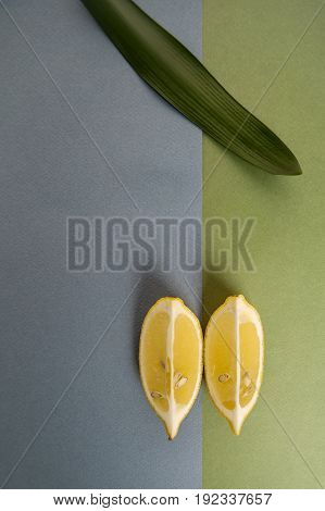 Minimalistic Composition With Two Lobules Of Limon On A Blue-green Pastel Background..