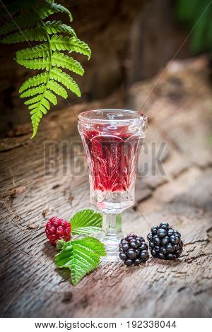 Homemade Liqueur Made Of Blackberries And Alcohol In Forest