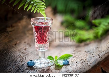 Strong Liqueur With Alcohol And Blueberries In Summer
