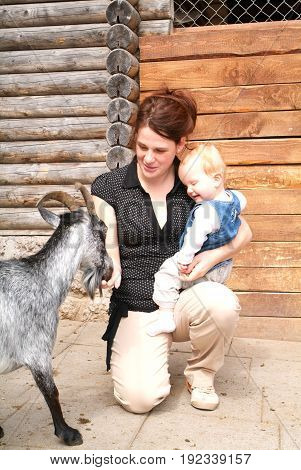 Woman With Child Who Pat The Goat At The Zoo