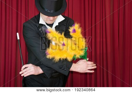 Magician Presents Flowers, Color Image, Red Background