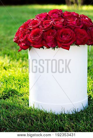 A Bouquet Of Red Roses In A Box