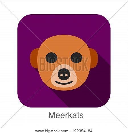 Meerkats animal face icon design, vector illustration