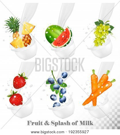 Set of different milk splashes with fruit nuts and berries. Watermelon grape carot strawberry blueberry pineapple. Vector Set.