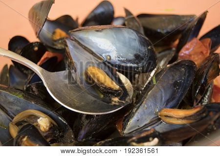 detail of a mussel of a soup of mussel