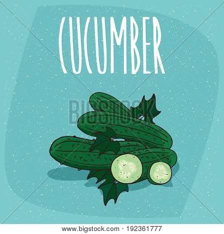 Isolated Fruits Cucumber Vegetable Whole And Cut