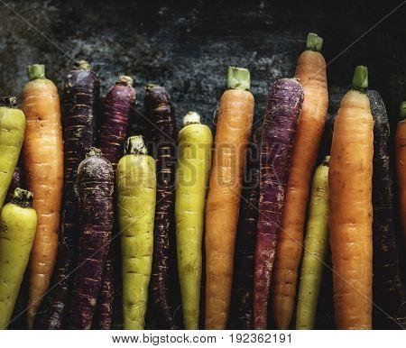 Variety of fresh edible carrots
