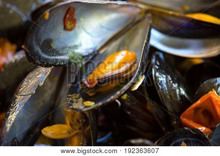 peppered steamed mussels or impepata di cozze