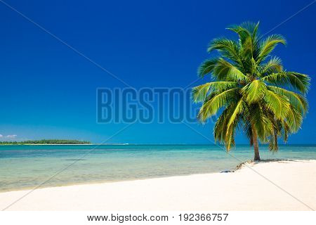 Beautiful beach. View of nice tropical beach with palms around. Holiday and vacation concept.