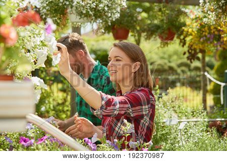Side view of young man and woman coworkers taking care of flowers and plants in the garden in sunny day.