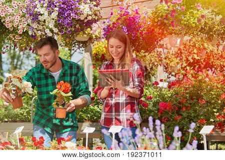 Professional male gardener standing in garden and showing plant to woman doing paperwork.