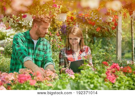Man standing with potted flower while female coworker writing in documents in the garden in sunny day.