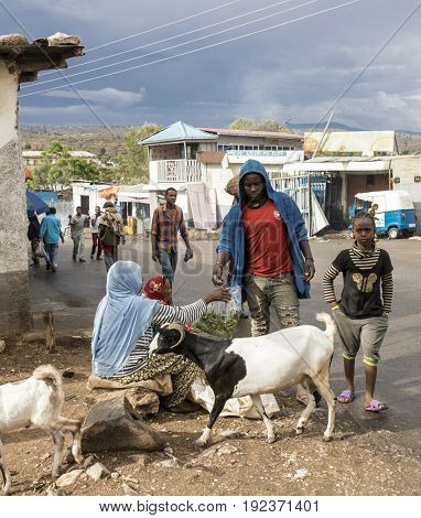 HARAR, ETHIOPIA-MARCH 26, 2017: Unidentified people buy Qat, a drug widely used in East Africa.