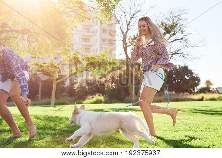 New pet owners playing with their puppy dog pet on a sunny summer day, healthy lifestyle