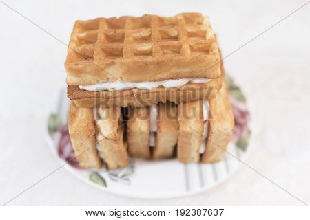 Three Viennese waffles with a cream filling and one wafer on top lie on a white saucer with a floral pattern on a white background