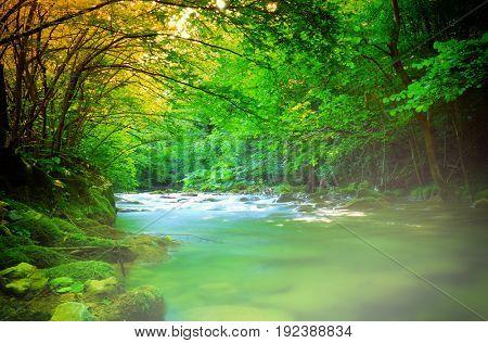 Mystic foggy mountain river