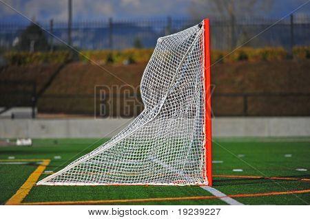Lacrosse ball in the net