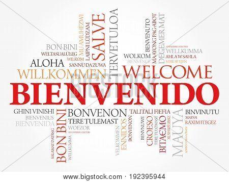 Bienvenido , Welcome In Spanish