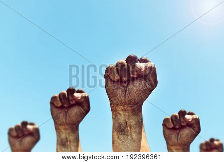 Male hands are clenched into a fist and raised up against the sky with a bright sun