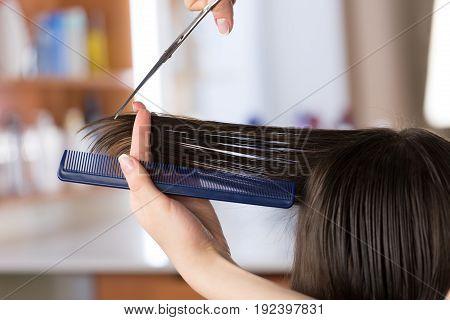 Hair style hairstyle hairdresser making beautiful customer