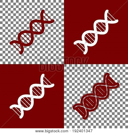 The DNA sign. Vector. Bordo and white icons and line icons on chess board with transparent background.