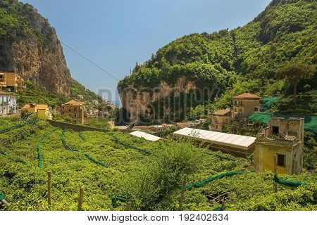 rural landscape with lemon tree plantations, used for the production of Limoncello, italian lemon liqueur, Amalfi, Southern Italy