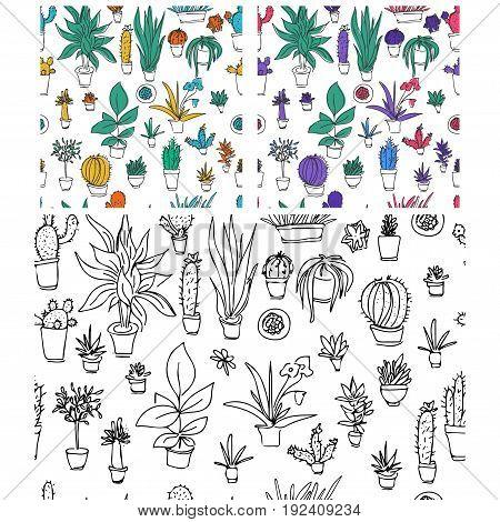 Set of different plants, cactus. Hand drawn vector  illustration.