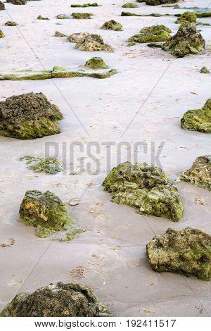 Limestone Rocks In Sand On Beach Of Atlantic Ocean