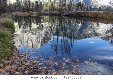 Morning Reflections in Merced River at the Swinging Bridge. Yosemite Valley, Yosemite National Park, California, USA.