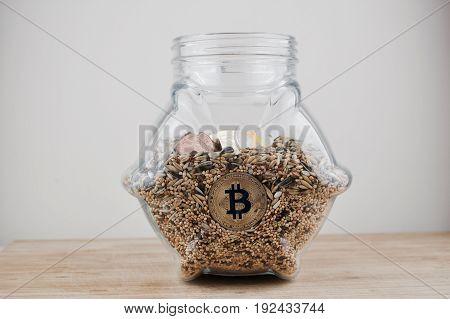 Gold Bitcoin In Jar
