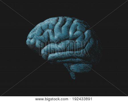 Engraving blue turquoise brain illustration on dark background