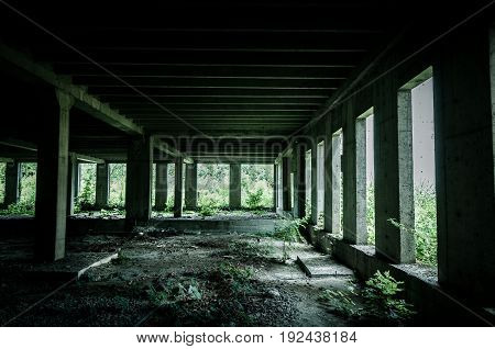 Abandoned building interior in the jungle forest. Dark grunge image.