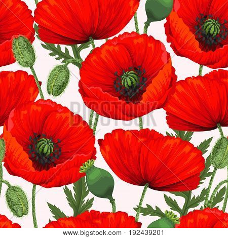 Red poppies, buds and leaves vector seamless background