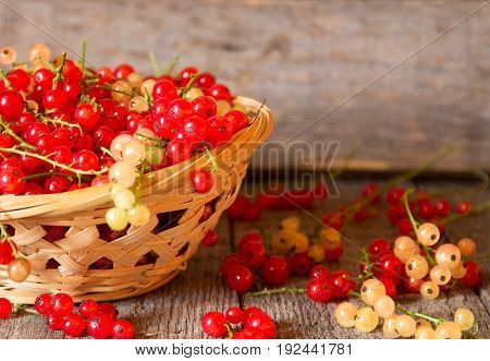 Red currant on brown wooden table. Selectiva focus.