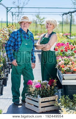 Gardeners standing in a nursery. Professional and cheerful gardening experts.