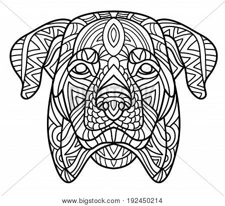 Monochrome ink drawing. Coloring book for adults. The head of a dog with pattern. Zenart. Line art design. The breed is Rottweiler