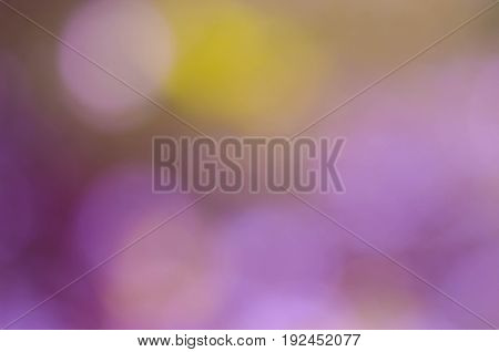 Beautiful Bokeh Blurred Background.