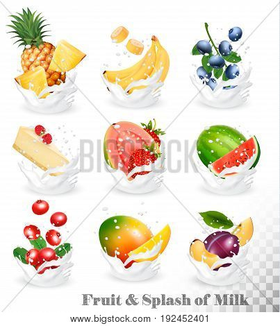 Big collection of fruit in a milk splash. Pineapple mango banana pear watermelon blueberry guava strawberry cheesecake grawberry raspberry. Vector Set 10.