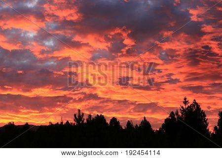 Beautiful sunset with some reddish clouds over the trees