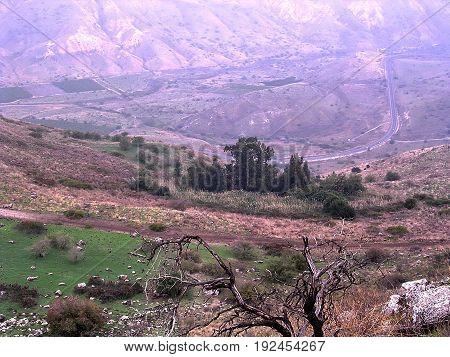 Ramat Ha-Golan, Israel - November 14 2006: The mountain landscape