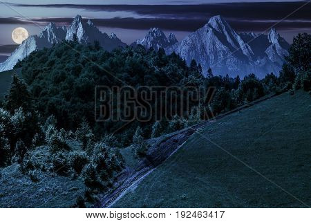 footpath uphill through forest on hillside. composite landscape with High Tatrs peaks at night in full moon light