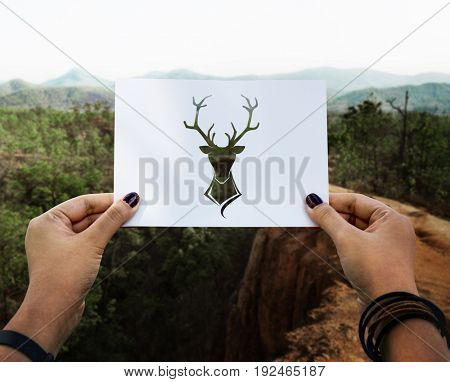 Wild life animal perforated paper moose