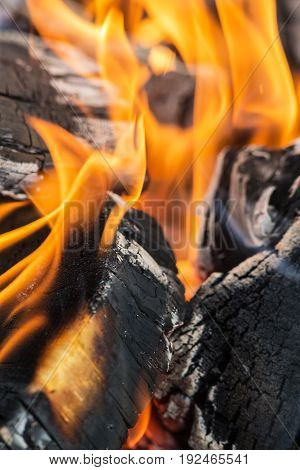 Abstract background of firewood in fire closeup