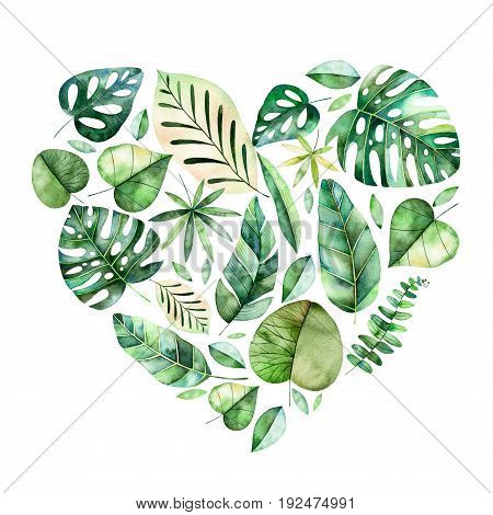 Handpainted illustration with colorful tropical leaves. Tropical forest collection.
