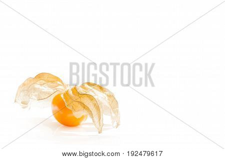 Close-up fresh pichuberry (Cape Gooseberry) very delicious and healthy berry fruit uchuva isolated on white background with shadow and copy space for text or wording decoration