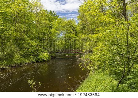 A creek and footbridge in the woods.