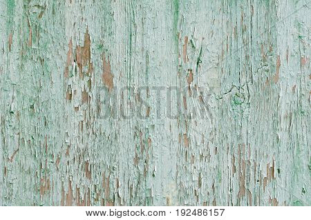 Mint Green Vintage Planks. Vertically Arranged. Texture. Background