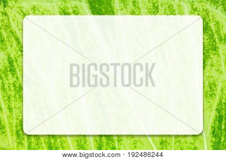 Empty white space with drop shadow on natural green leaf background for business, education and communication concept design.